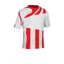 Mira Jersey - Short Sleeves
